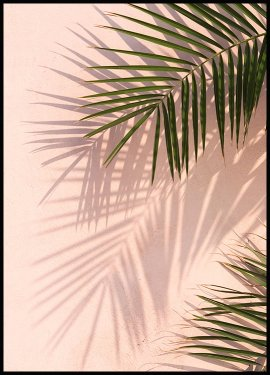Pink Wall Palms Plakat