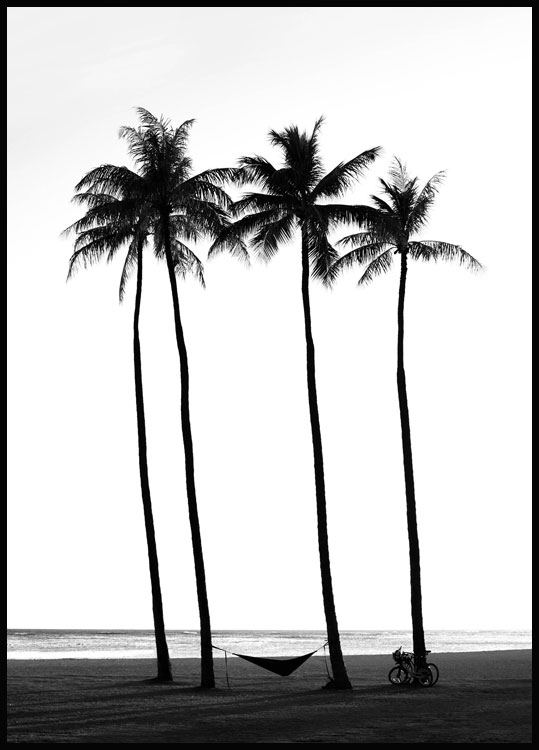 Beach Palm Trees Plakat